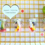 Soiree // Little Lemonades