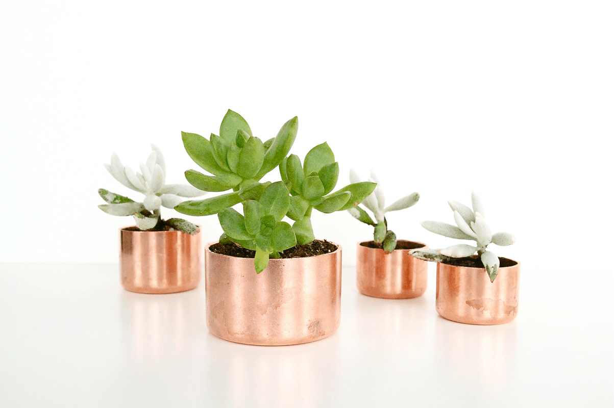 DIY Mini Copper Planters and organizers - Sugar & Cloth - DIY - Houston Blogger - Poppy Talk
