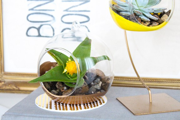 DIY colored hanging terrariums