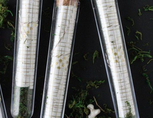 DIY Scroll Test Tube Invitations - sugar and cloth