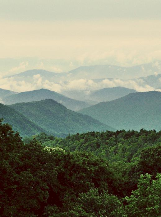 Home Sweet West Virginia - Sugar & Cloth - Houston Blogger - Travel