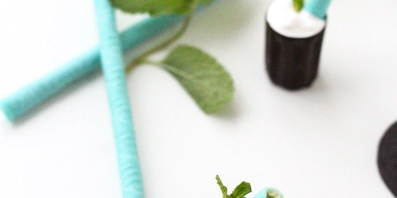 Edible White Chocolate Mint Mousse Cups - Sugar and Cloth