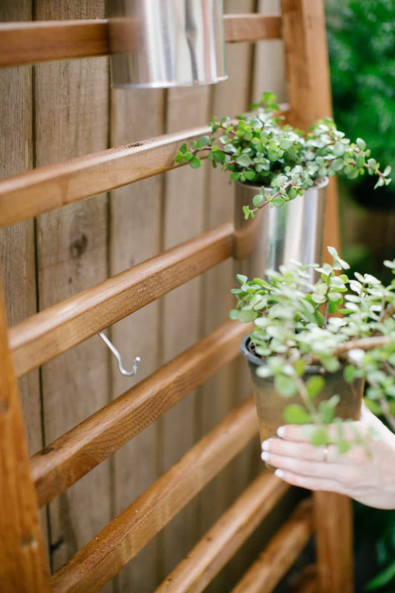 photo of how to hang a succulent or herbs on a vertical planter