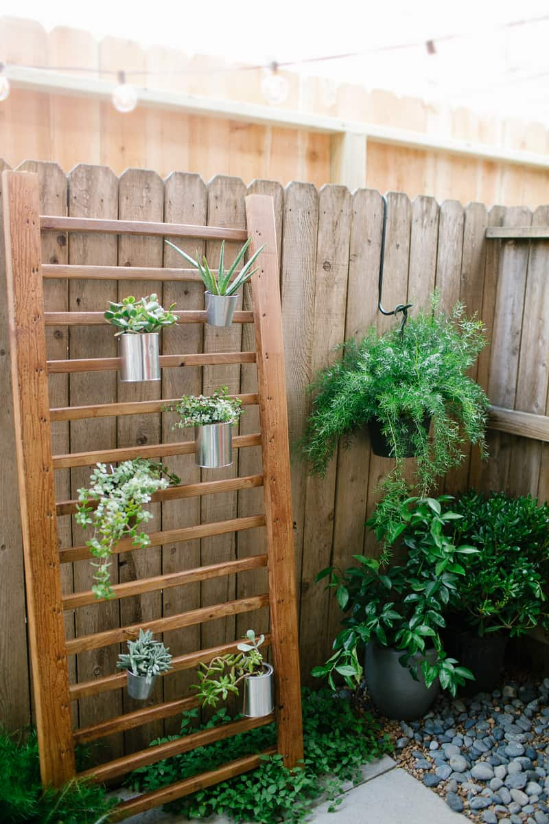 DIY // Outdoor Succulent Wall Accent on Backyard Wall Design id=68539