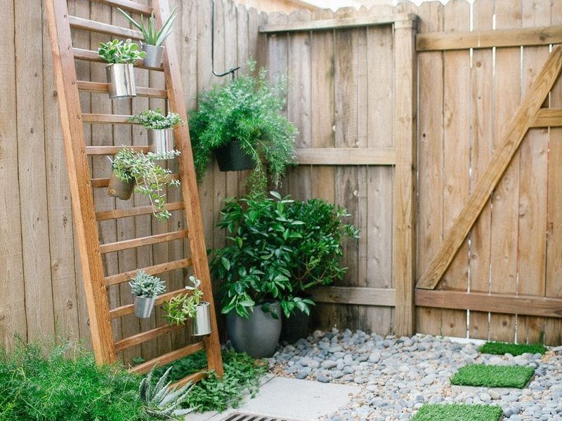 photo of a backyard with faux grass paver stones and vertical garden