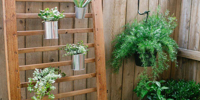 photo of a wooden handrail as a DIY vertical garden