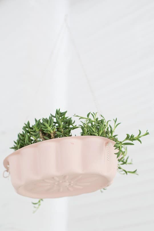DIY hanging bundt cake pan planters | sugarandcloth.com