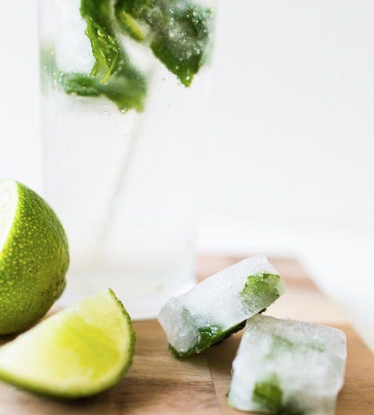 mojito ice cubes | sugarandcloth.com