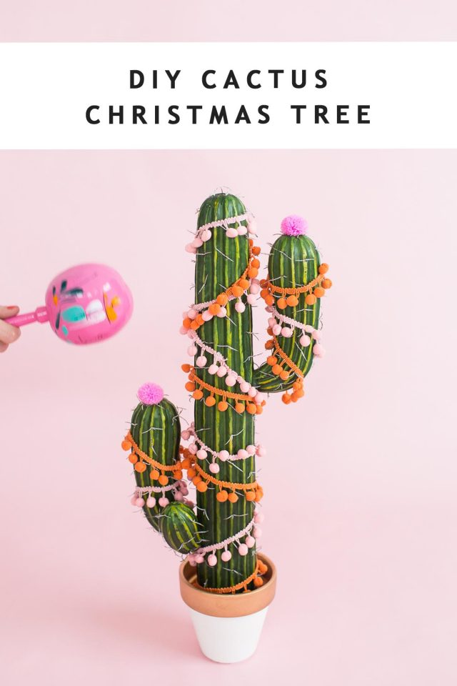 photo of a decorated cactus tree by sugar and cloth
