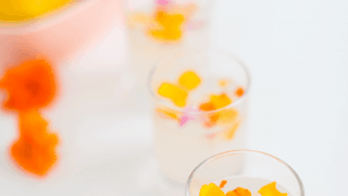 Edible Flower Lemon Jello Shot Recipe