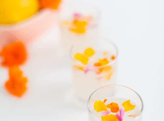 Edible Flower Lemon Jello Recipe