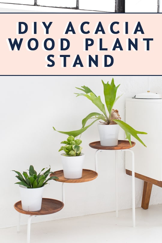 photo of the Ikea Hack DIY acacia wood plant stand  by top Houston lifestyle blogger Ashley Rose of Sugar & Cloth