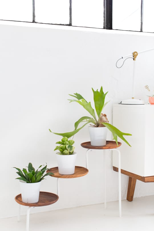 DIY Acacia Wood Plant Stand by Top Houston Lifestyle Blogger Ashley Rose #modern #acacia #wood #plant #plantmom #diy #homedecor #indoor #acaciawood