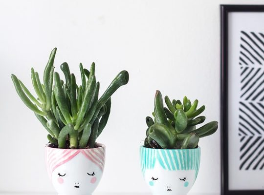 DIY mini face planters | sugar & cloth