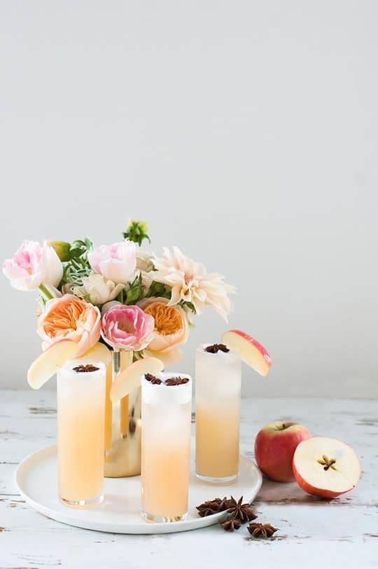 Apple Brandy Allspice Fizz Cocktail Recipe - sugar and cloth - entraining cocktails by Houston Blogger Ashley Rose #cocktail #drink #fizz #apple #brandy #allspice #applebandy #holiday #recipe