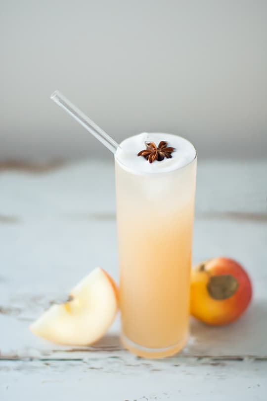 Apple Brandy Allspice Fizz 5