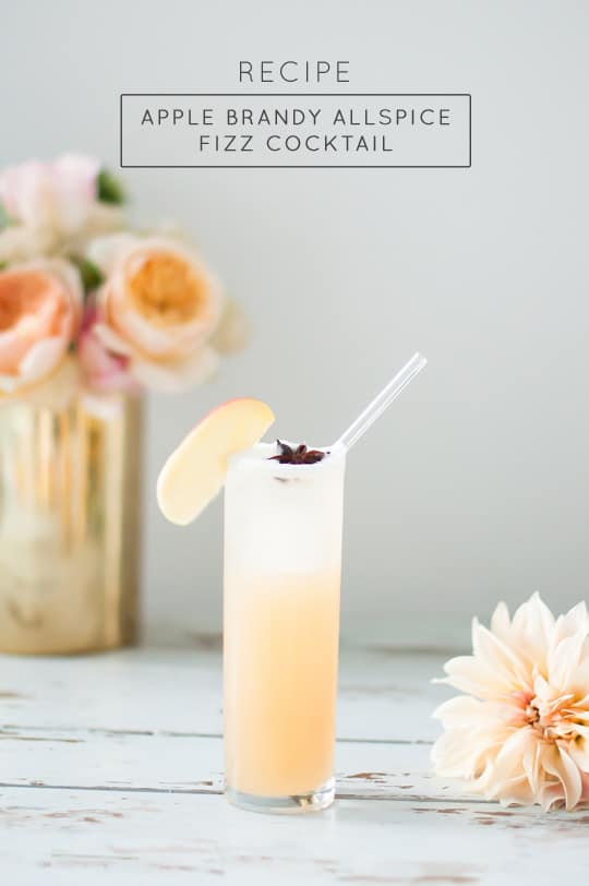 apple brandy allspice fizz cocktail recipe - sugar and cloth