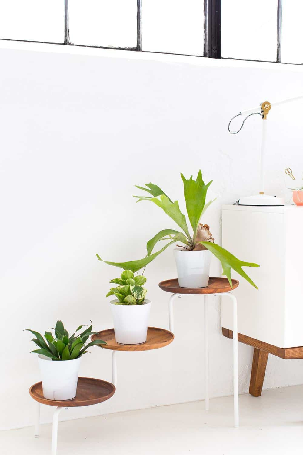 DIY acacia wood plant stand - sugar and cloth