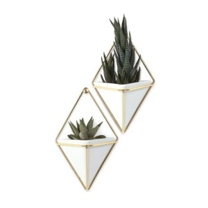 These Umbra Trigg Hanging Planters are one of Sugar & Cloth's favorite home decor finds.