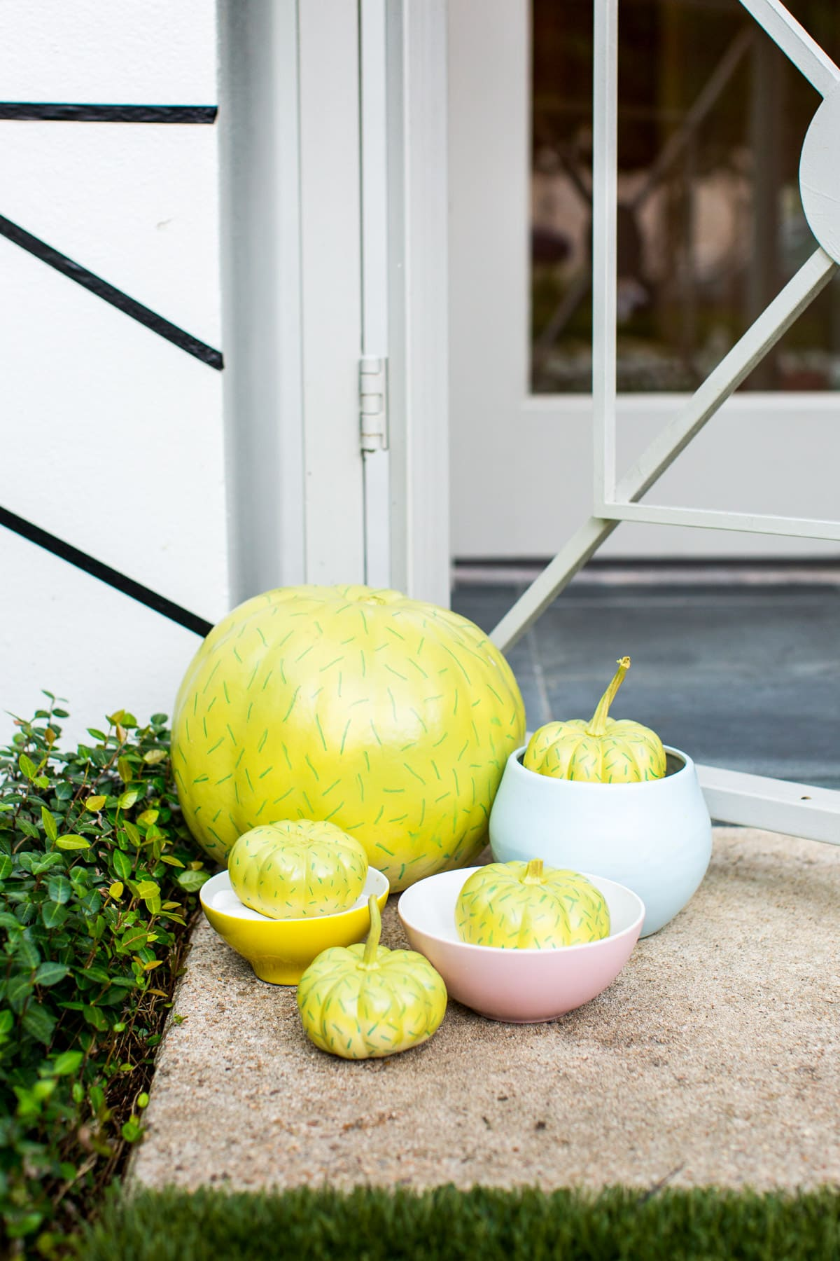 cacti and succulent pumpkin decoration idea - Palm Springs Inspired Halloween Entryway Decor & Product Round Up by top Houston lifestyle blogger Ashley Rose - #halloweendecor #halloween #decor #home #holidays #curbappeal #palmsprings #midcentury