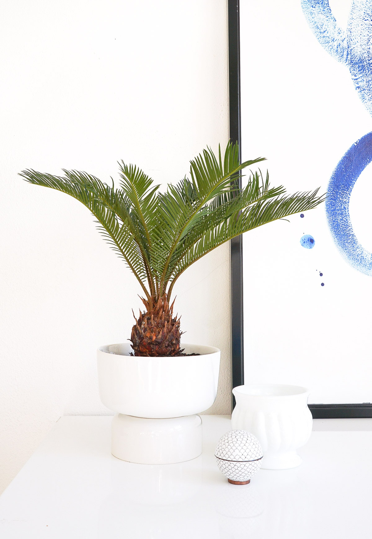 Mid Modern Planter - Sugar & Cloth - Houston Blogger - DIY - Home Decor