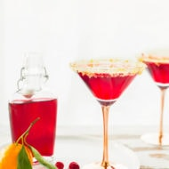 Cranberry Sidecar Cocktail by Sugar & Cloth, an award winning DIY, recipes, and lifestyle blog.