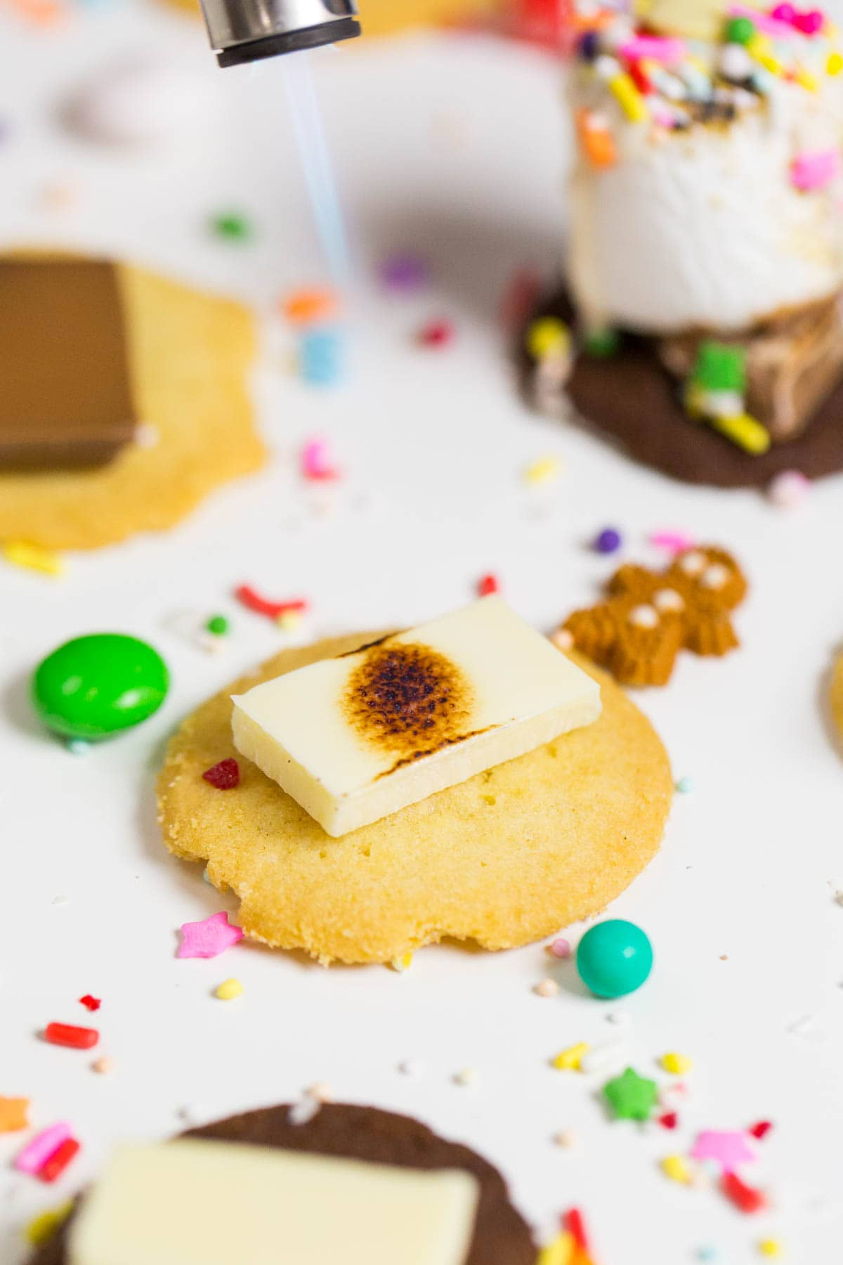Holiday Cookie and Sprinkle S'mores recipe by Ashley Rose of Sugar and Cloth, and award winning DIY blog.