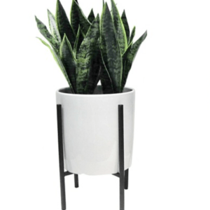 This Midcentury Fake Plant is one of Sugar & Cloth's favorite home decor finds.