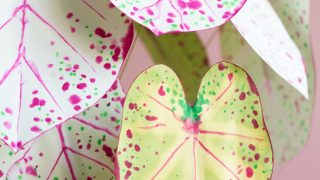 How to Make Paper Plants + A DIY Paper Caladium