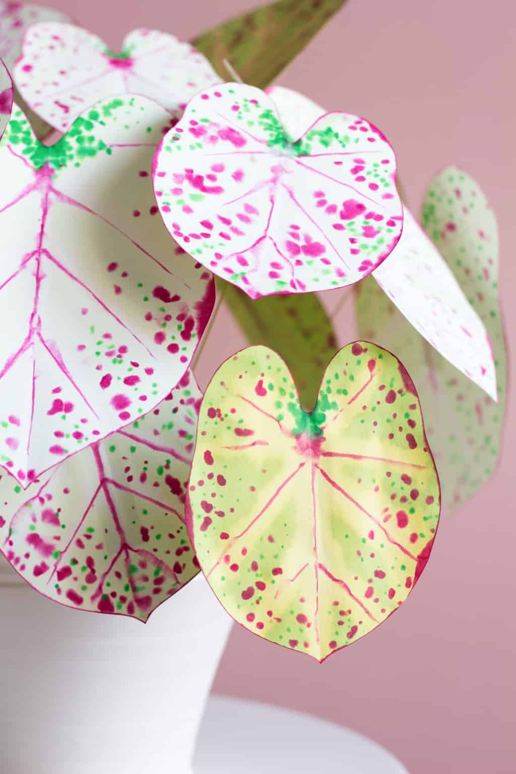 How To Make Paper Plants A Diy Paper Caladium Sugar Cloth