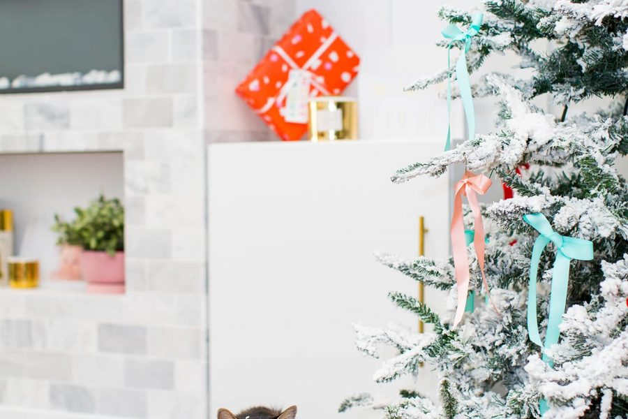 the cutest gifts for pets and pet parents for presents this year! by top Houston lifestyle blogger Ashley Rose of Sugar & Cloth #gifts #giftguide #pets #presents #christmas #holidays #ideas