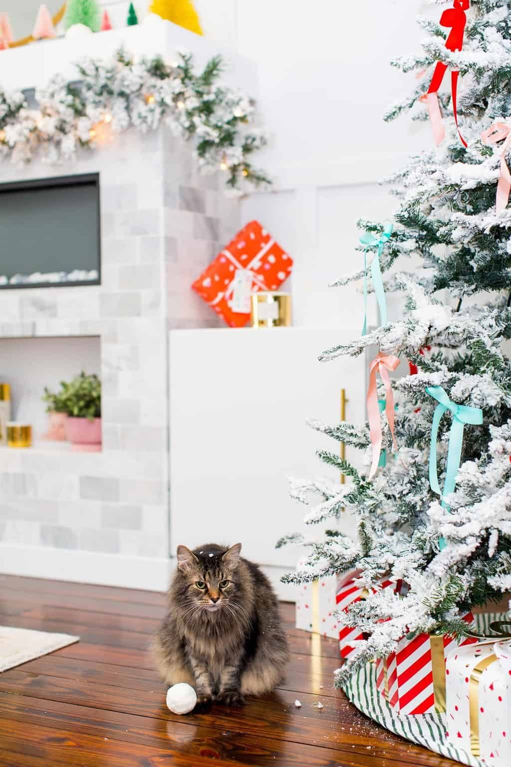 Gifts for Pets (and Pet Parents!) | Sugar & Cloth