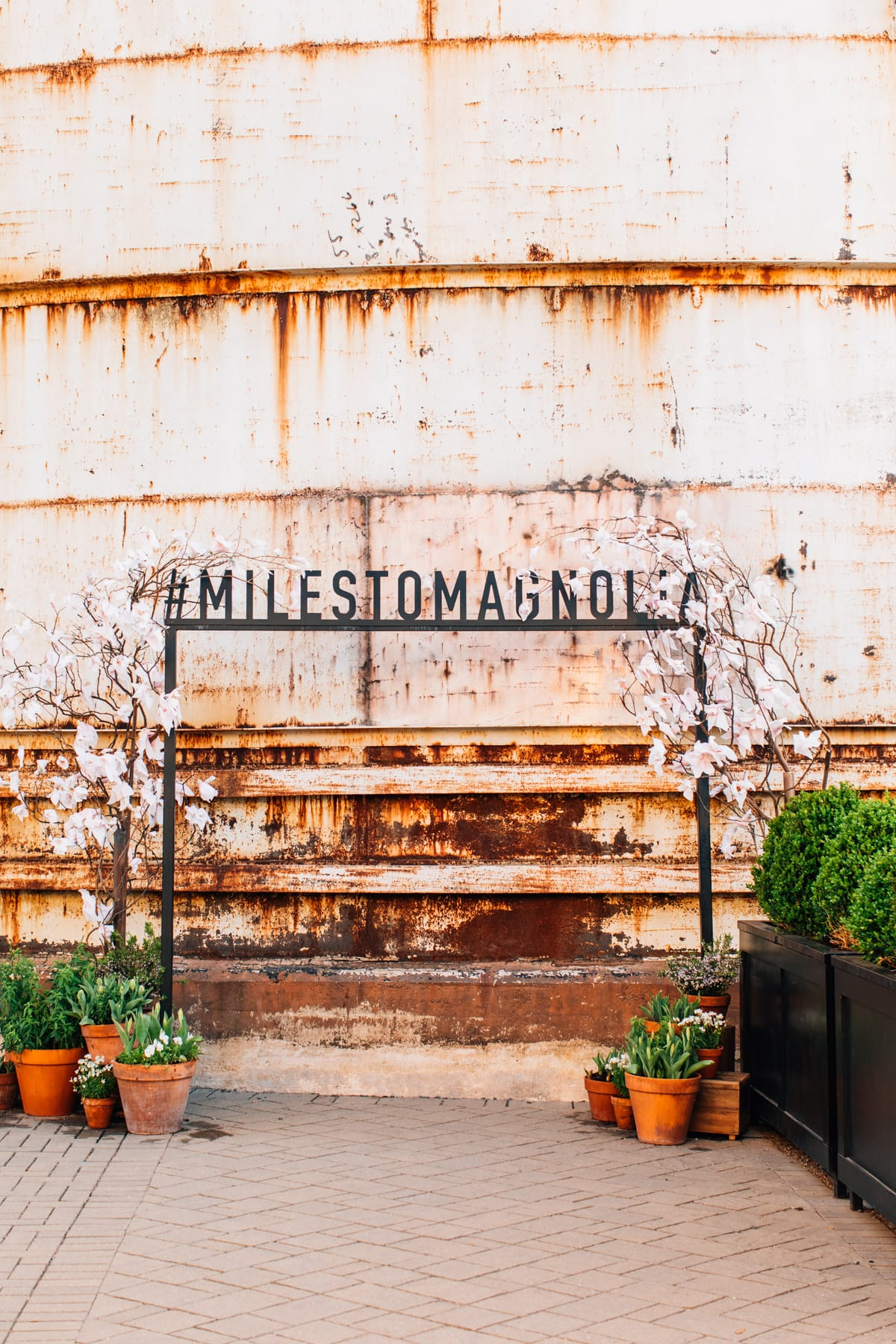Texas Monthly + Magnolia Market Miles To Magnolia photo op signage from fixer upper's joanna gaines by top Houston lifestyle blogger Ashley Rose of Sugar & Cloth