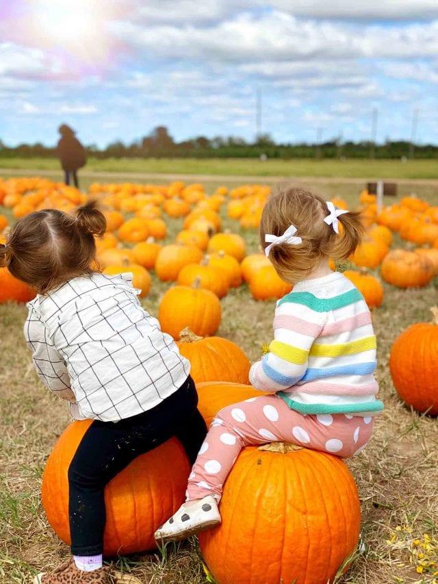 two little girls at a pumpkin patch dewberry farm houston texas