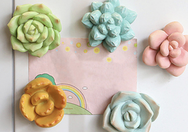 photo of colorful mini succulent plants magnets for her