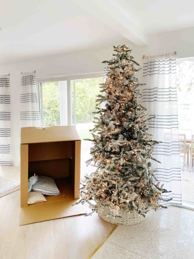 photo of a box and christmas tree