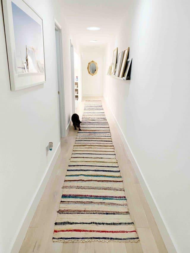 cat in a long hallway