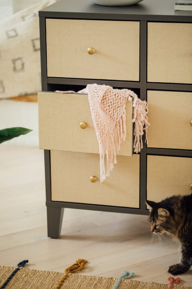 cat in front of ikea drawers