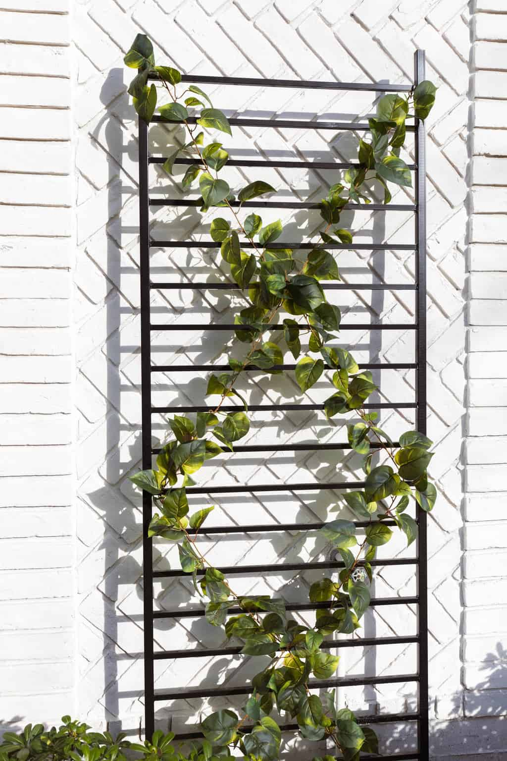a DIY trellis in front of limewash painted white brick wall