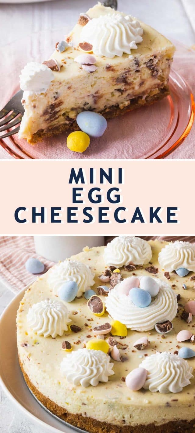 graphic of the recipe card for Mini Egg Cheesecake by top Houston lifestyle blogger Ashley Rose of Sugar & Cloth