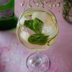 Italian Martini Spritz Cocktail Recipe